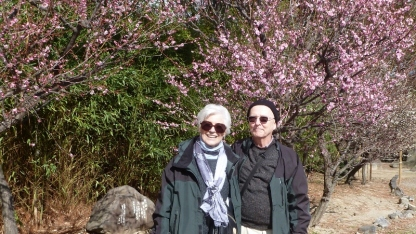 Rog and Sandy at the Shinto Temple on the Osaka Castle grounds with the Plum Trees in bloom. Yeah right, they were just transplanted from the hothouse!