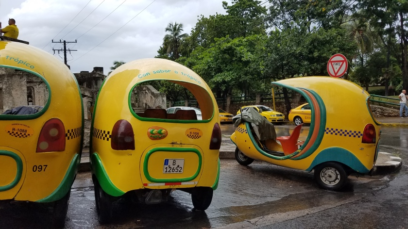 "These cute little taxi cabs are called ""coconuts."""