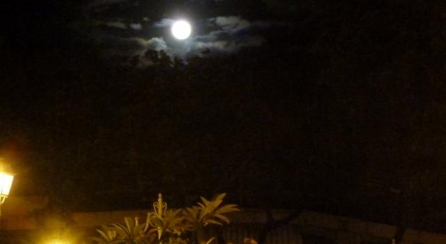 Moonlight over the festivities.