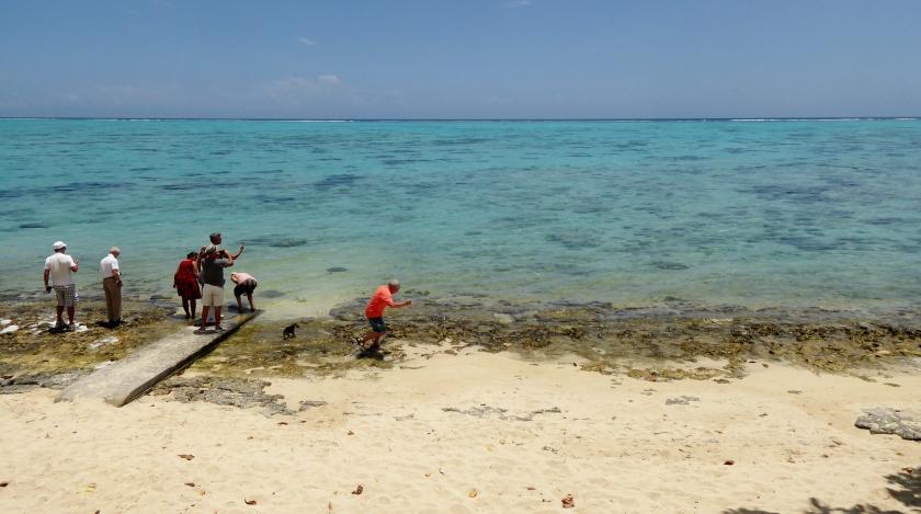 Carolita feeding raw fish to the manta rays.