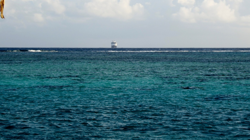 We will watch the MS Amserdam anchor in Opunohu Bay from our bungalow!