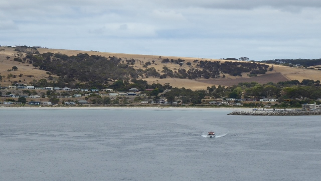 We anchored at Penneshaw and tendered to the ferry dock.