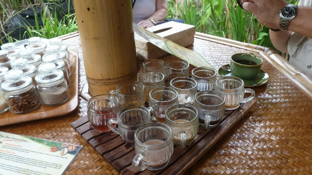 A flight of teas and coffee for us to sample.
