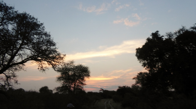 A South African sunset over the Savannah.