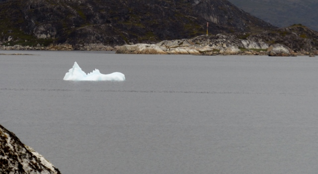 There are icebergs floating by.