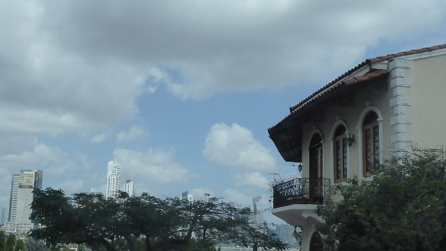 Modern Panama city visible over the treetops.
