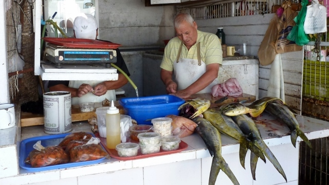 Fish Market in 2014 photo