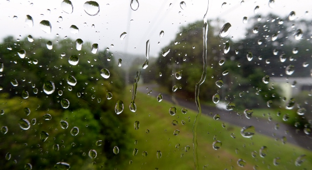 A risk of visiting the rainforest is RAIN.....