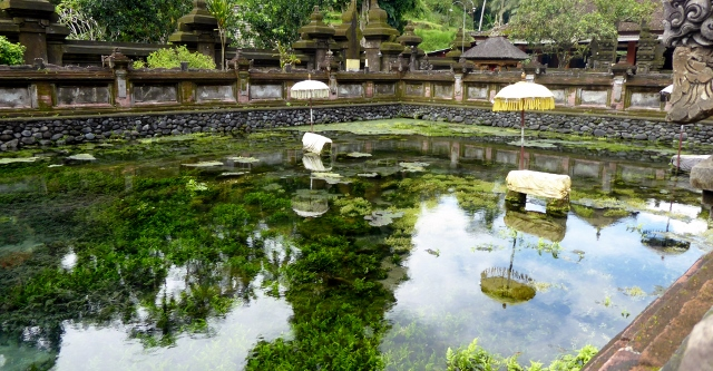 The grounds of Tirtha Empul are beautiful!