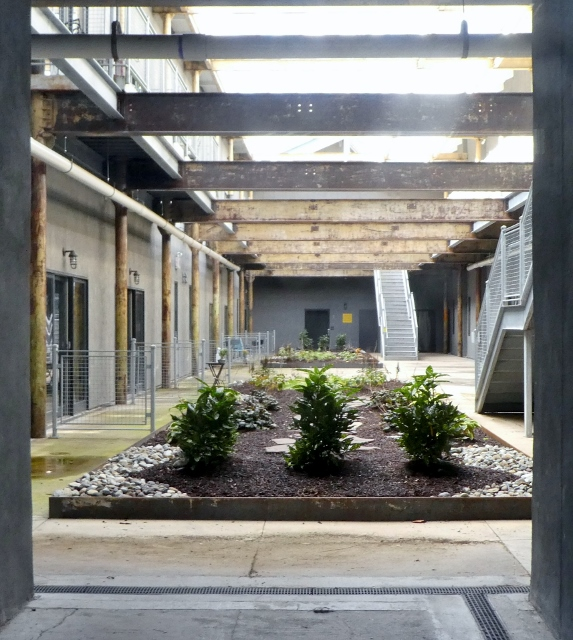 The interior courtyard of an apartment building.