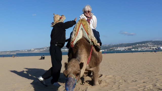 Oh yeah,  Sandy was game for a camel ride!
