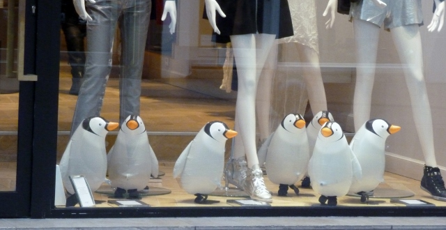 Penguins in Cannes