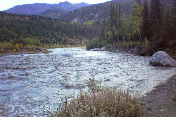 Denali Park Alaska